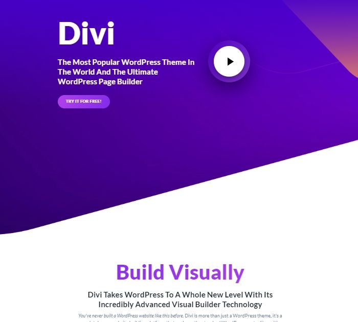 SEO friendly WordPress themes: Divi