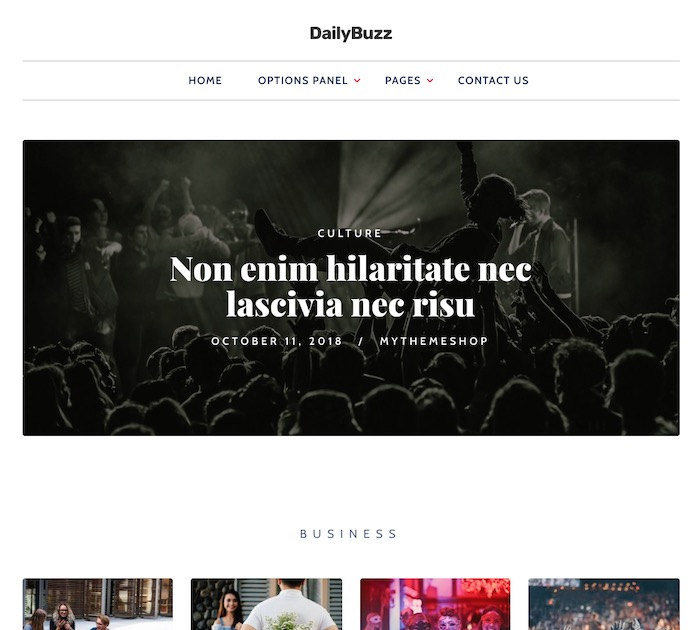 SEO friendly WordPress themes: dailybuzz
