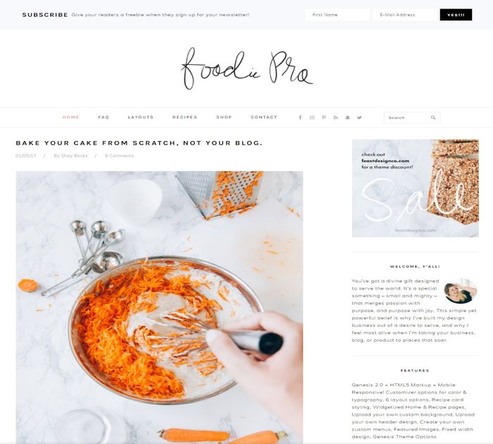 SEO friendly WordPress themes: Foodie Pro
